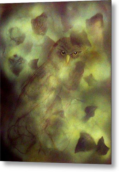 Owl Eyes Metal Print by Lynda McDonald