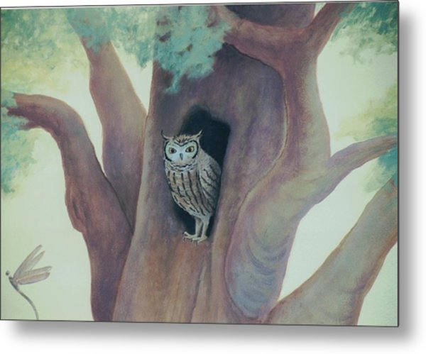 Owl In Tree Metal Print