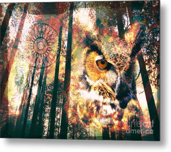 Owl Medicine 2015 Metal Print