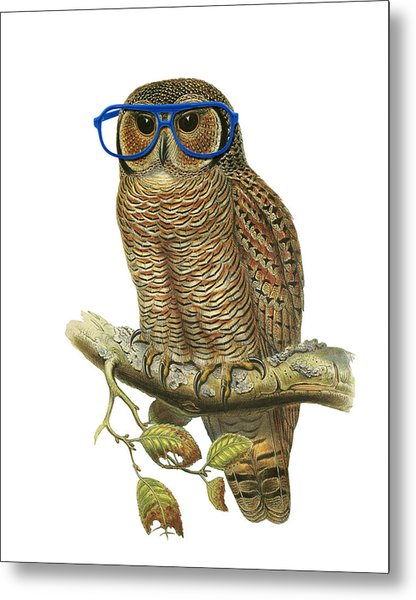 Owl Sitting On A Branch With Blue Glasses Metal Print