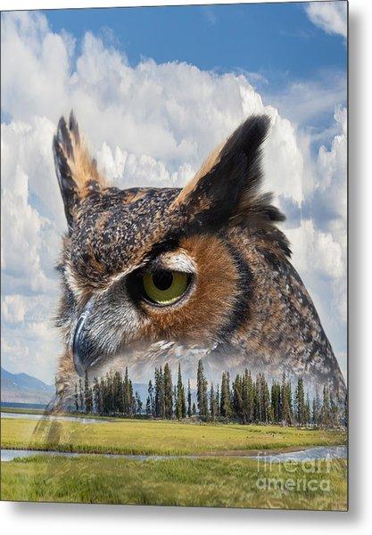 Owl's Rest Metal Print