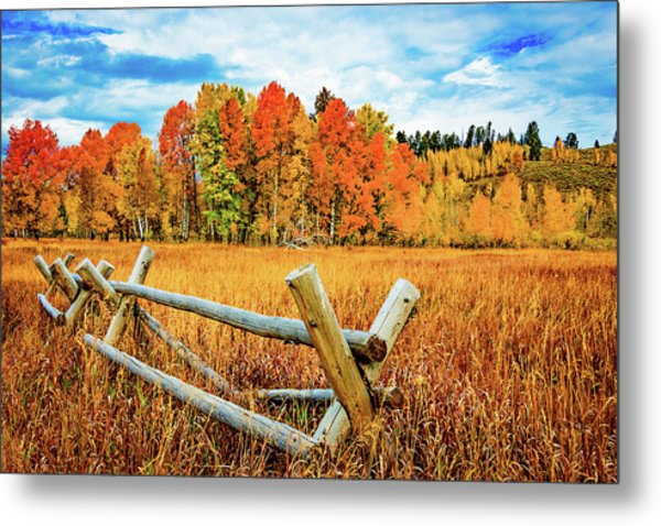Oxbow Bend Fall Color Metal Print