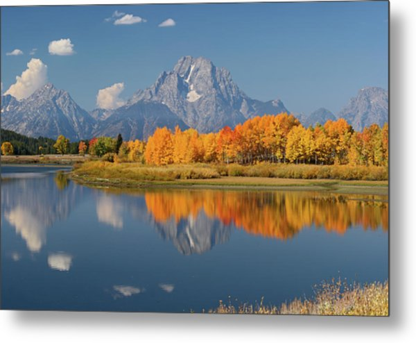 Oxbow Bend Reflection Metal Print