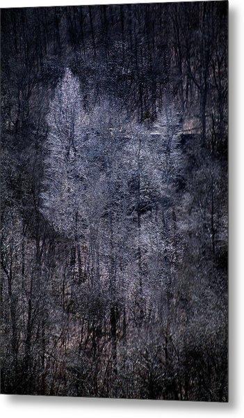Ozarks Trees #6 Metal Print