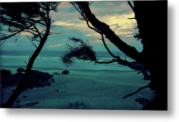 Metal Print featuring the photograph Pacific Paradise by Pacific Northwest Imagery