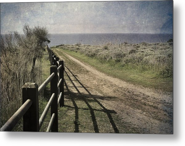 Pacific Path Metal Print