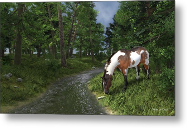 Paint Horse By The Forest Stream Metal Print