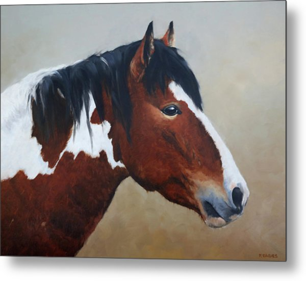 Paint Stallion Metal Print