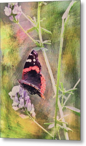 Painted Butterfly Metal Print by James Steele