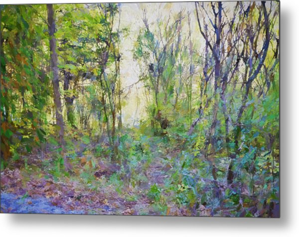 Painted Forrest Metal Print