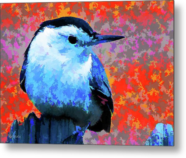 Painted White Breasted Nuthatch Metal Print