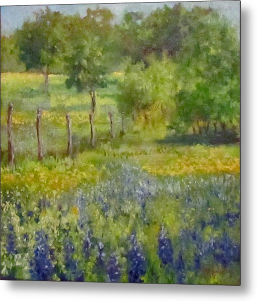 Painting Of Texas Bluebonnets Metal Print