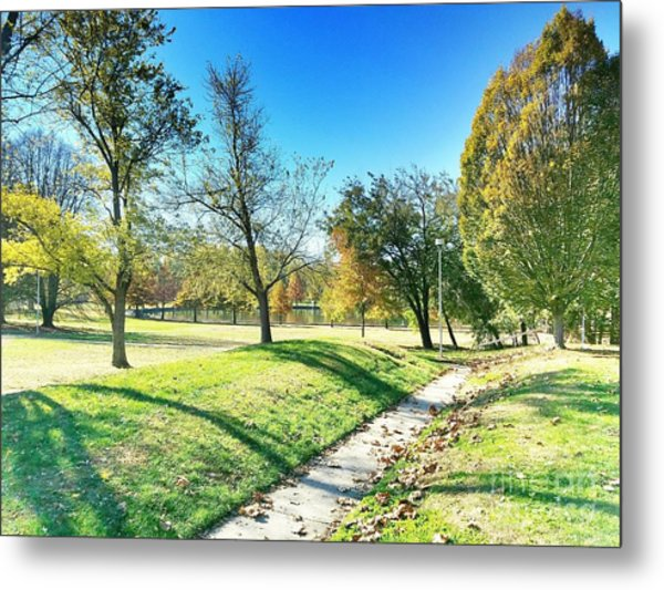 Painting With Shadows - Park Day Metal Print