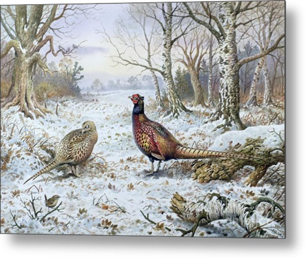 Pair Of Pheasants With A Wren Metal Print