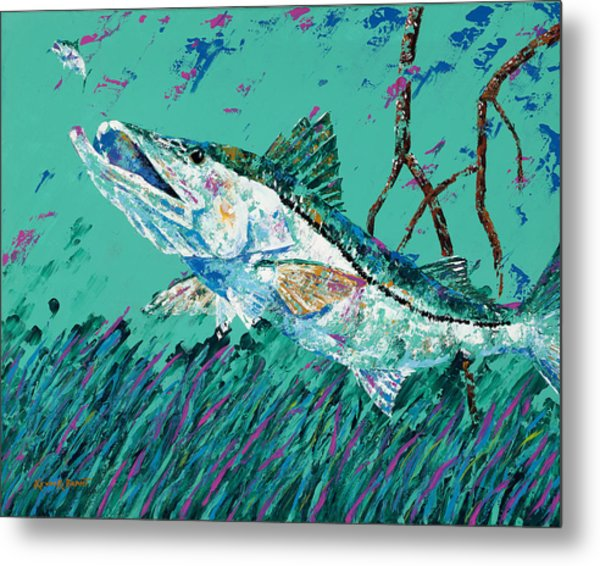 Pallet Knife Snook In The Mangroves Metal Print