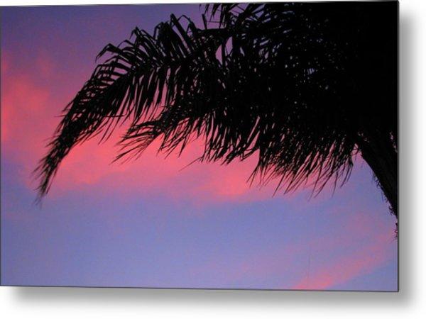 Palm At Sunset Metal Print