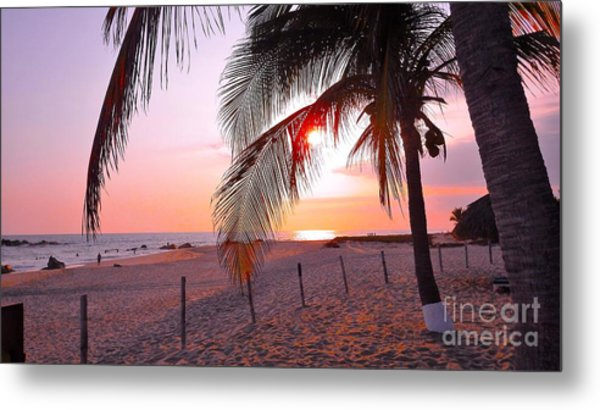 Palm Collection - Sunset Metal Print