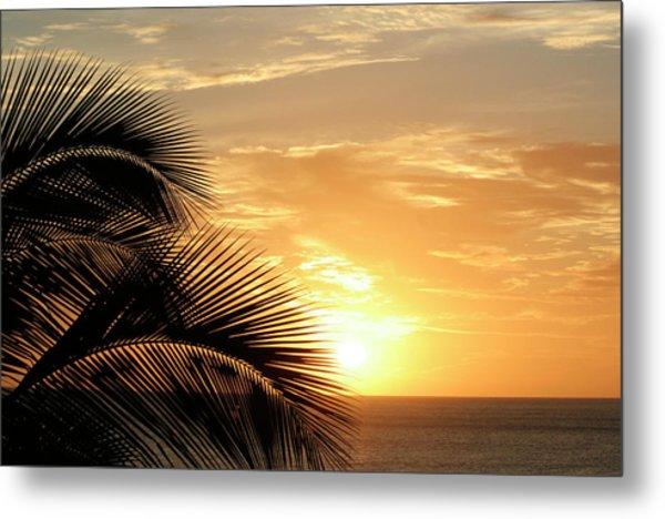 Palm Sunset 2 Metal Print