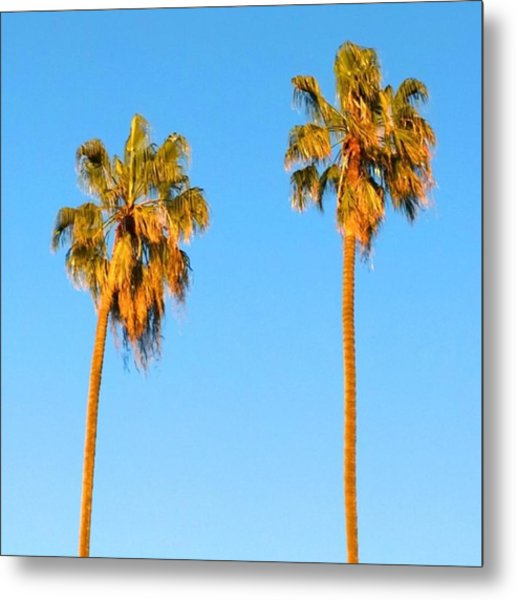 #palm #trees At Sunset. #california Metal Print