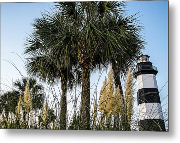 Palms At Lightkeepers Metal Print