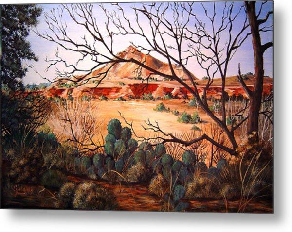 Palo Duro Canyon Metal Print