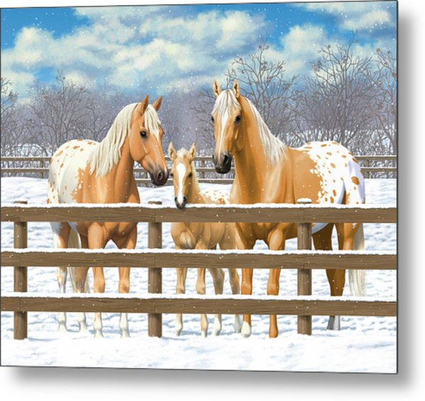 Palomino Appaloosa Horses In Snow Metal Print by Crista Forest