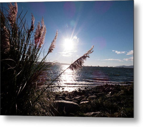 Pampas By The Sea Metal Print