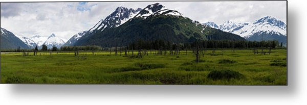 Panorama Of Green Meadow Metal Print