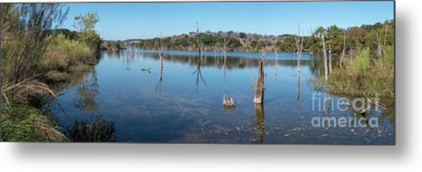 Panoramic View Of Large Lake With Grass On The Shore Metal Print