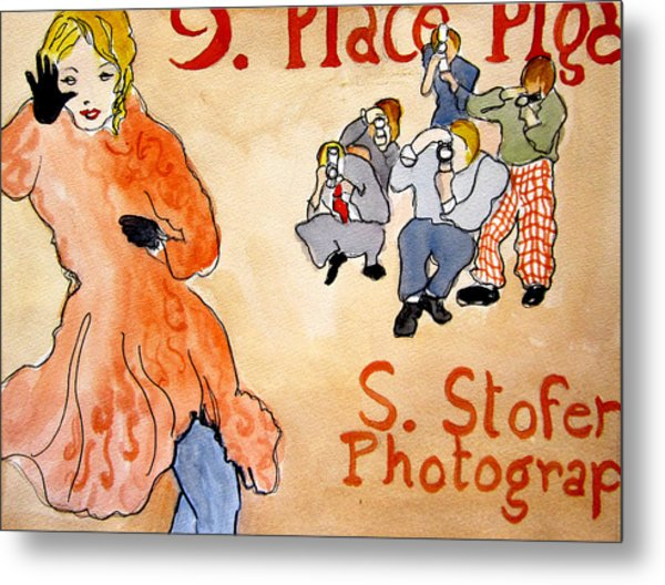 Paparazzi Metal Print by Suzanne Stofer