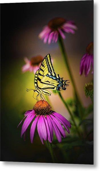 Papilio Metal Print