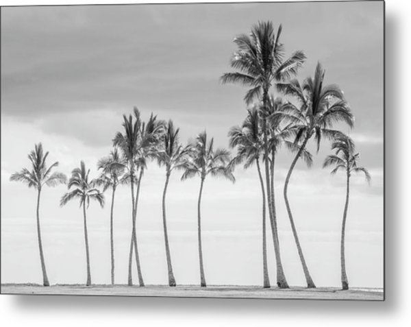 Paradise In Black And White Metal Print