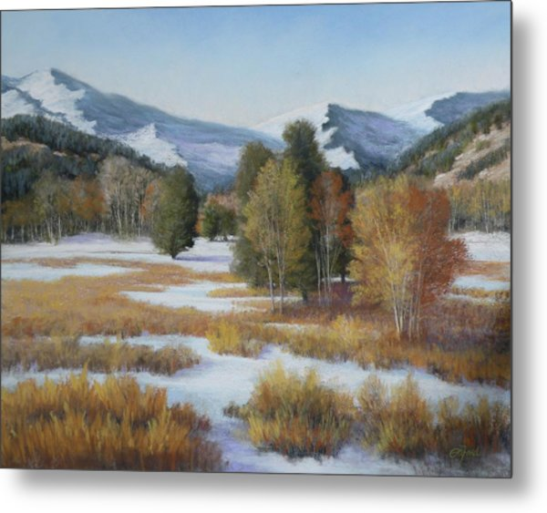 Paradise Metal Print by Paula Ann Ford