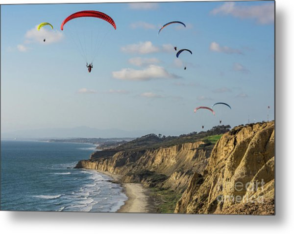 Paragliders At Torrey Pines Gliderport Over Black's Beach Metal Print
