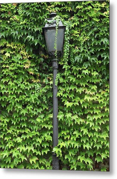 Parisian Lamp And Ivy Metal Print