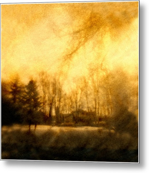 Parkview Ave Metal Print by Diana Ludwig