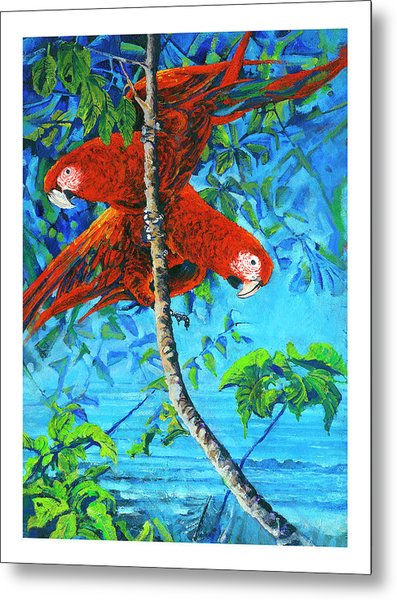 Parrots In Canopy Above Metal Print