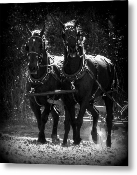 Partners In Strength 1 Metal Print