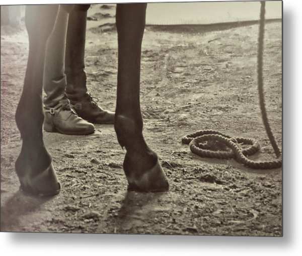 Our Partnership Metal Print by JAMART Photography