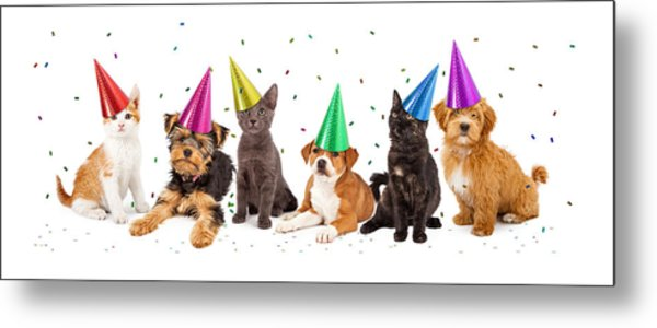 Party Puppies And Kittens With Confetti Metal Print