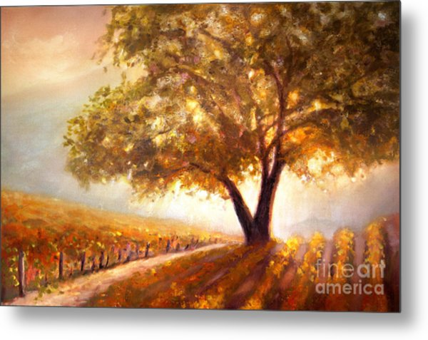 Paso Robles Golden Oak Metal Print