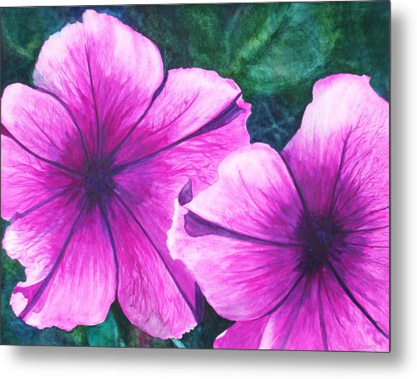 Passionate Petunias Metal Print by Ally Benbrook