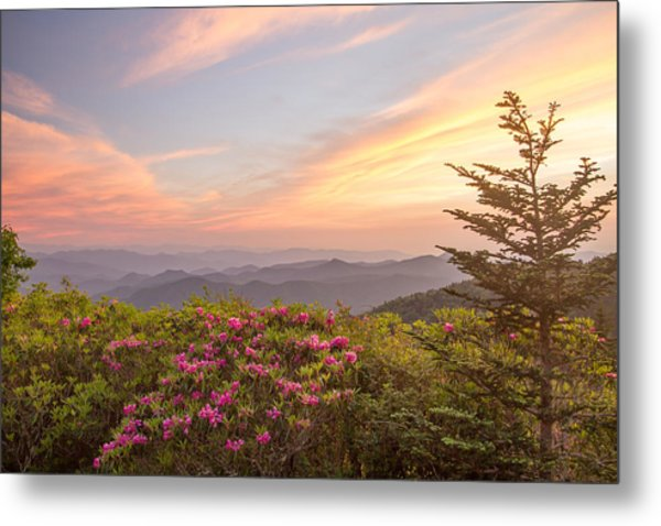 Pastel Sky Metal Print by Doug McPherson