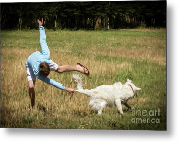 Pasture Ballet Human Interest Art By Kaylyn Franks   Metal Print