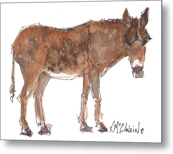 Pasture Boss 2015 Watercolor Painting By Kmcelwaine Metal Print