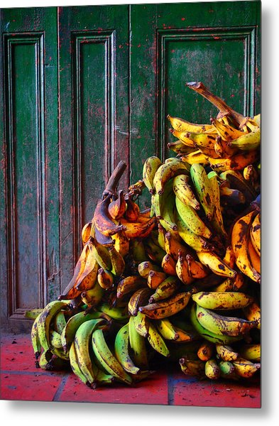 Metal Print featuring the photograph Patacon by Skip Hunt