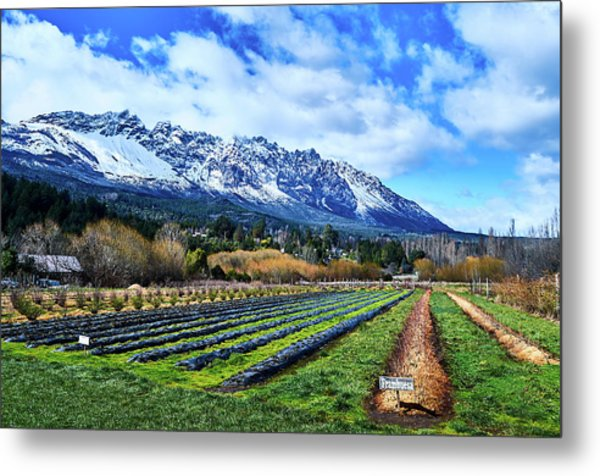 Landscape With Mountains And Farmlands In The Argentine Patagonia Metal Print