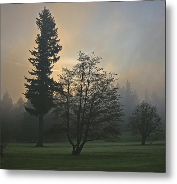 Patchy Morning Fog Metal Print