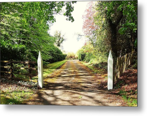 Path Ahead Metal Print