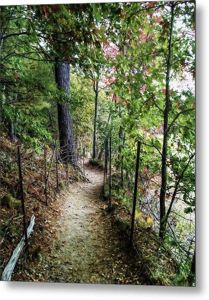 Path Along The Pond Metal Print